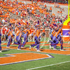 clemson-tiger-band-troy-2016-591