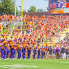 clemson-tiger-band-troy-2016-691
