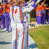 clemson-tiger-band-troy-2016-477