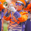 clemson-tiger-band-troy-2016-727