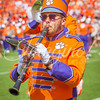 clemson-tiger-band-troy-2016-685