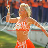 clemson-tiger-band-troy-2016-293