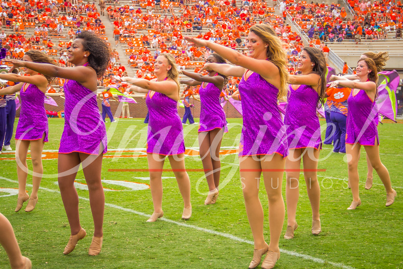 clemson-tiger-band-troy-2016-831
