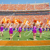 clemson-tiger-band-troy-2016-695