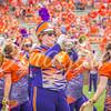 clemson-tiger-band-troy-2016-813