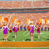 clemson-tiger-band-troy-2016-696
