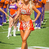 clemson-tiger-band-troy-2016-659