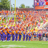 clemson-tiger-band-troy-2016-690