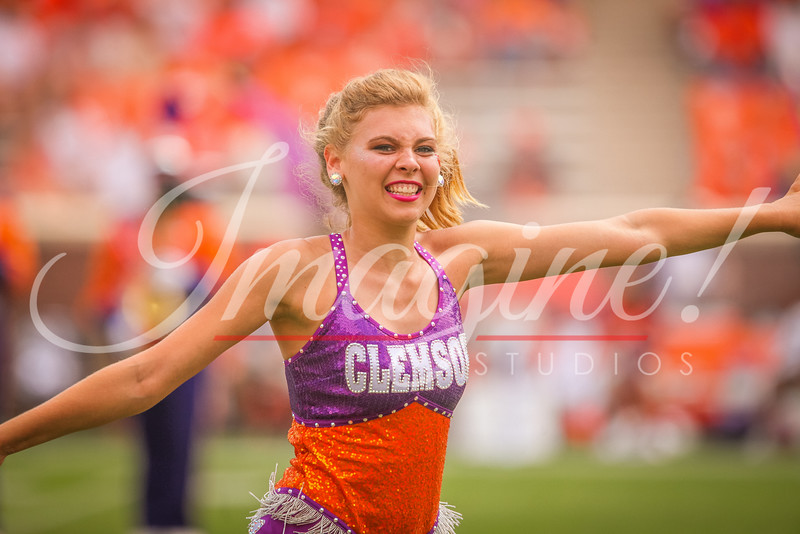 clemson-tiger-band-troy-2016-761