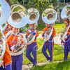 clemson-tiger-band-troy-2016-432