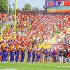 clemson-tiger-band-troy-2016-688