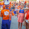 clemson-tiger-band-troy-2016-575