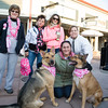 Thousands of people, including cancer survivors, their families and businesses, and dogs Enzo and Brody walking for Kenneth Ward, participated in the annual American Cancer Society Making Strides Against Breast Cancer walk at Woodbury Common Premium Outlets in Central Valley, NY on Sunday, October 16, 2016. Hudson Valley Press/CHUCK STEWART, JR.