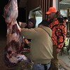 GLENN IS TEACHING JOE TO SKIN & PARTIALLY  BUTCHER HIS DEER