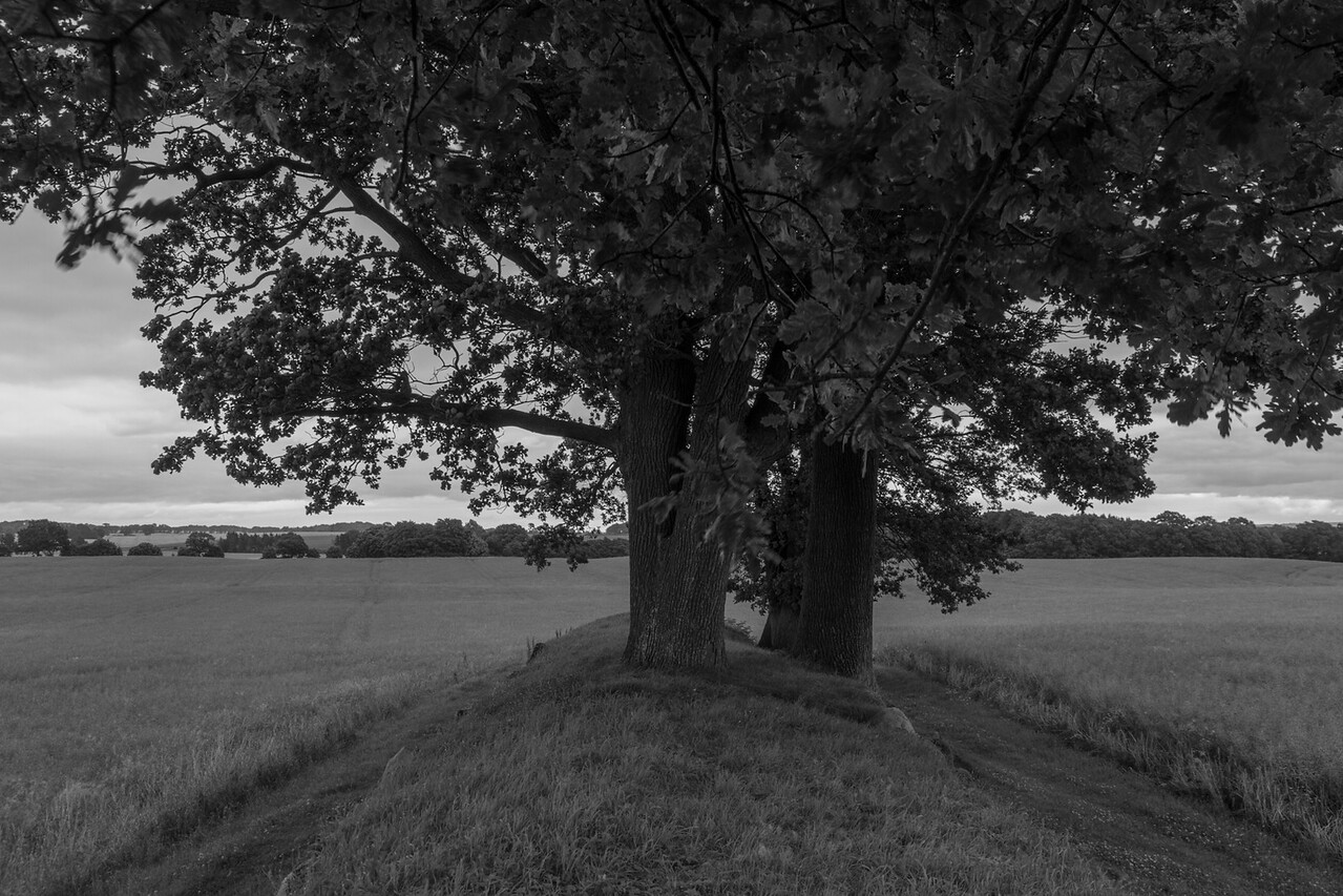 eckernförde_2016-07-18_112520