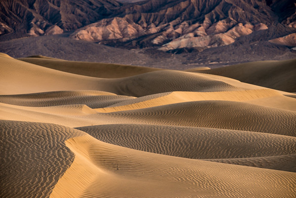 Wandered out to the Mesquite Sand Dunes and found some neat shapes