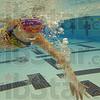 MET120916 swim breiding