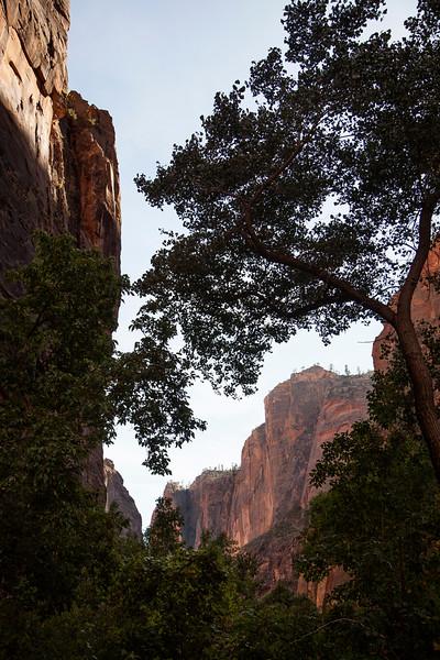 Zion Canyon sinks into shadow as the sun drops lower toward the horizon.