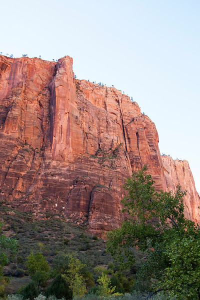 Moonlight Buttress, a climbing route on our current tick-list, looms over Zion Canyon.