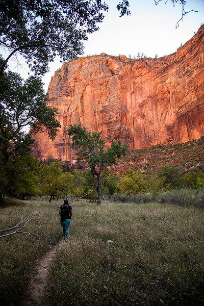 Tracy wanders a trail in Zion Canyon.