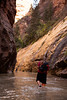 Tracy wades the Virgin River heading upstream in Zion's narrows.