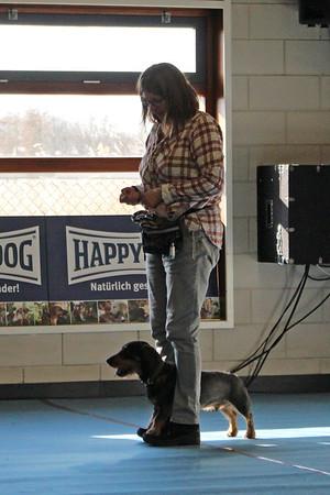 Dogdancewedstrijd ~ 28 februari 2016 (foto's Mariska)