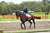 16-05-07_Red_2290-A