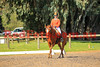 16-08-20_Red_4776-A