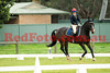 16-08-21_Red_4526-A