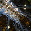 A view of the abstract geometry which comprises the ceiling of the nave inside Basilica de la Sagrada Família. Barcelona, Spain.
