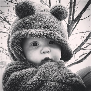 Amy Goodrich – Baby Bear