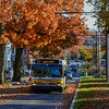 MBTA Route 72 Bus on a late fall afternoon in Cambridge.