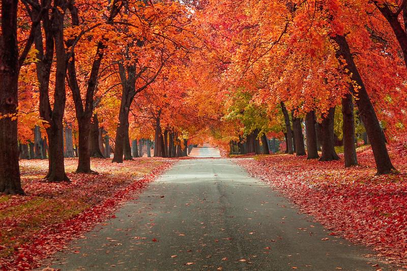 October Road...