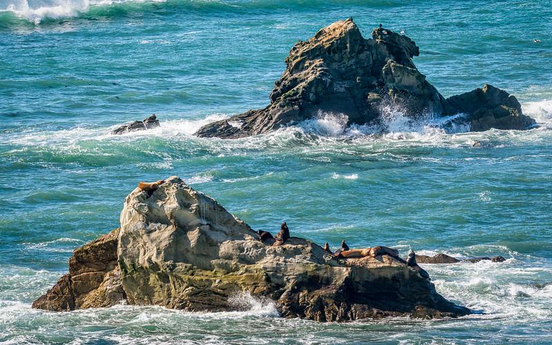 West Coast Photo Trip 201602-21