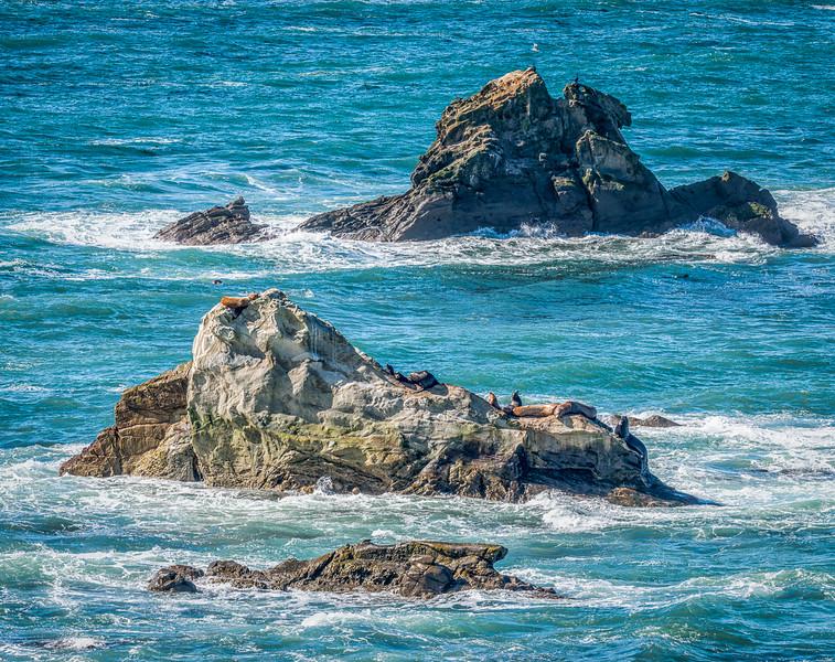 West Coast Photo Trip 201602-19