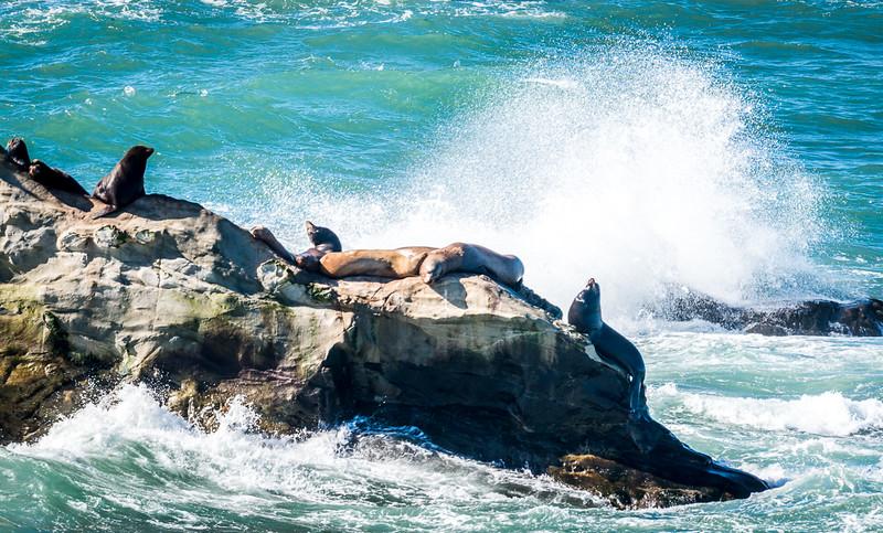West Coast Photo Trip 201602-20