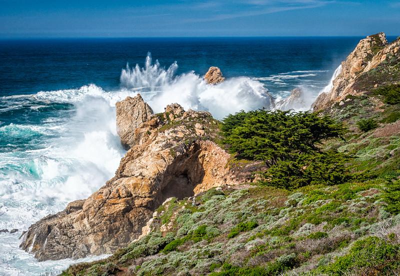 West Coast Photo Trip 201602-31