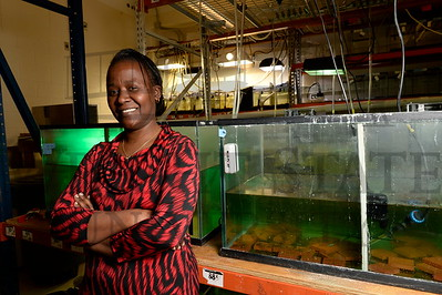 17081 Alum Renalda Munubi Misinzo African Marine Biology 2-17-16