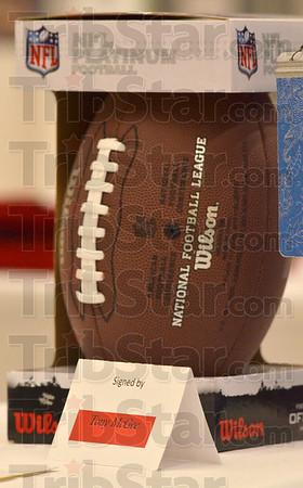 MET021116MCGEE football