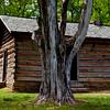 Snodgrass House Horseshoe Ridge Chickamauga Battlefield_1093