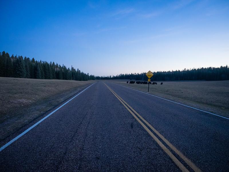 Arizona Route 67
