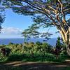 The Garden Of Eden Arboretum... an amazing creation by my old Telluride friend Alan Bradbury