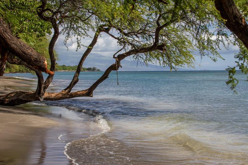 Great snorkeling spot