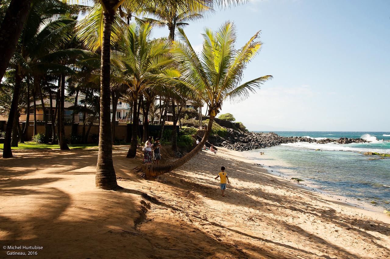 Hawaii-6032