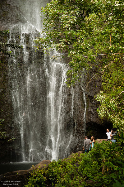Hawaii-6166