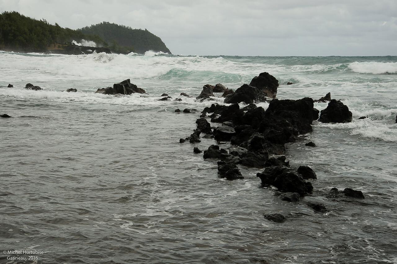 Hawaii-6102