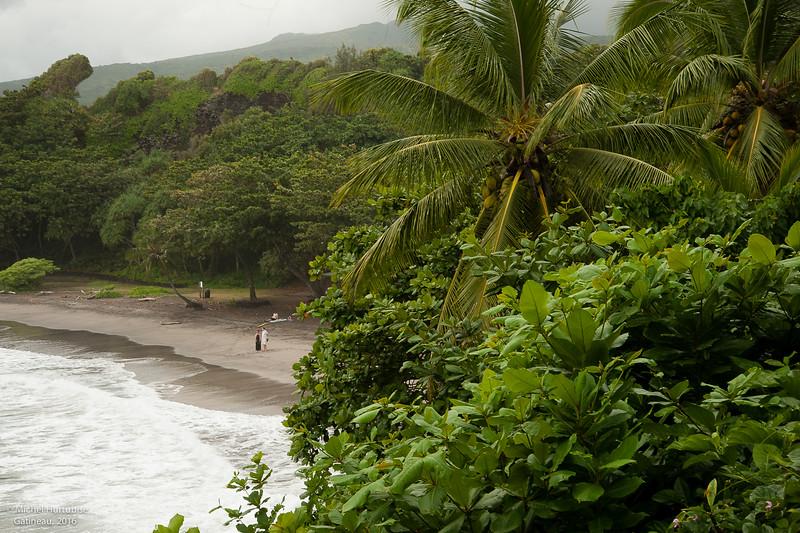 Hawaii-6152