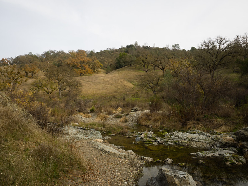 East fork of Coyote Creek