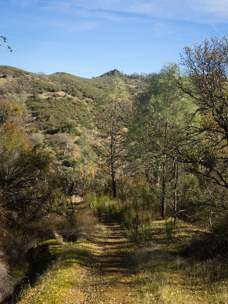 Descending toward Pacheco Creek