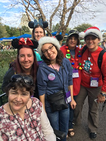 "Disneyland Holiday Happiness ""C"" Group"